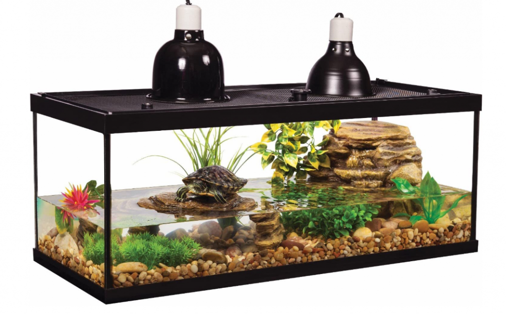 best turtle tank 20 gallon
